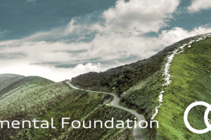 Audi Environmental Foundation Scholarship 2019 (Attend One Young World Summit)